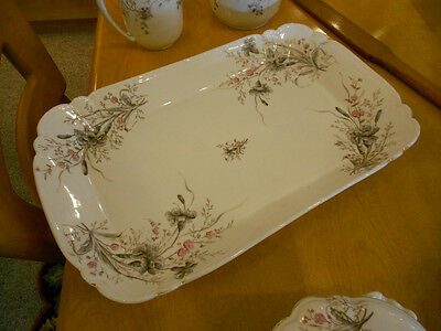 Carlsbad Marx & Gutherz victorian large platter hand painted china