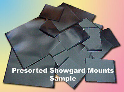 Mounts For US Telegraph Color Stamp Album Pages