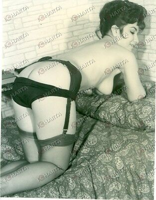 1955 ca EROTICA VINTAGE Naked woman with nylon garter *FOTOGRAFIA