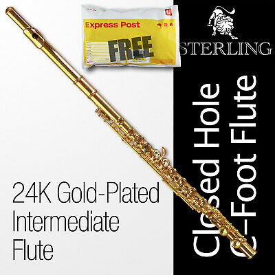 24k Gold-Plated STERLING FLUTE • 16 Key C-Foot  • BRAND NEW • Perfect for School