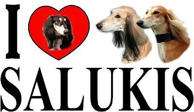 I LOVE SALUKIS Dog Car Sticker By Starprint - Ft. the Saluki
