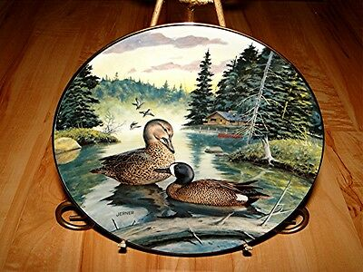 LIVING WITH NATURE DUCKS The Blue Winged Teal Duck Bird PLATE