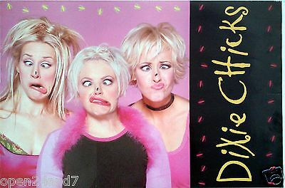 """DIXIE CHICKS """"FLY"""" 2-SIDED U.S.PROMO POSTER-Flies On Their Noses & Album Artwork"""