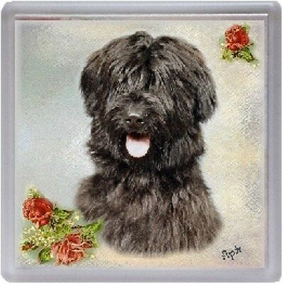 Briard Coaster Design No. 1 by Starprint
