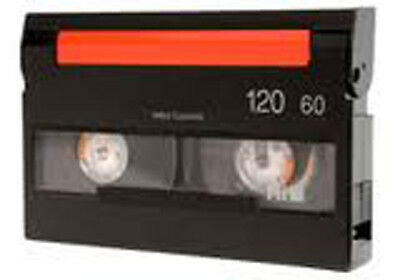 PAL Digital Hi 8 Hi8 Hi-8 8mm 8 mm VIDEO TAPE TRANSFERRED TO NTSC DVD - Copy Svc