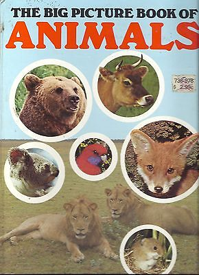 THE BIG PICTURE BOOK OF ANIMALS- Cliveden Press 1980s, Vintage & RARE,GREAT BOOK