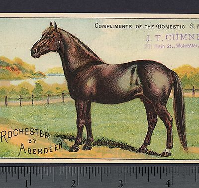 1800's Race Horse Rochester by Aberdeen JT Cumner Worcester Domestic Sewing Card