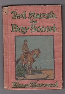 BSA Boy Scout Book: Ted Marsh the Boy Scout