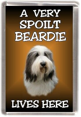 "Bearded Collie Dog Fridge Magnet ""A VERY SPOILT BEARDIE LIVES HERE"" by Starprint"