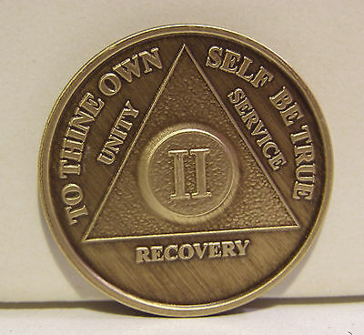 Alcoholic 2 Year Recovery 2 Yr Chip Medallion Coin Medal Token  AA Anonymous