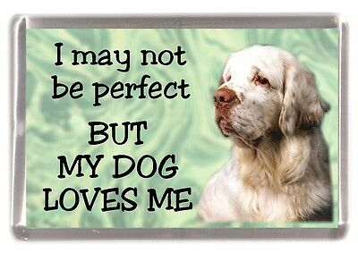 "Clumber Spaniel Dog Fridge Magnet ""I may not be perfect BUT..."" by Starprint"