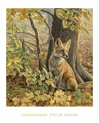 FOX ART PRINT - Eyes of Autumn by Kalon Baughan 30x24 Wildlife Poster