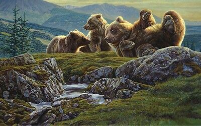 14x11 BEAR ART PRINT - Above the Ridge by Kalon Baughan WILDLIFE Poster