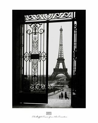 PARIS ART PRINT - The Eiffel Tower from the Trocadero by Sally Gall 16x20 Poster