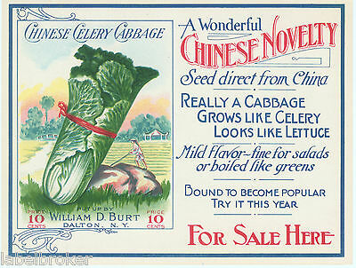 VINTAGE SEED PACKET FLOWERS C1910 GENERAL STORE RARE CHINESE CABBAGE LABEL 5X4""