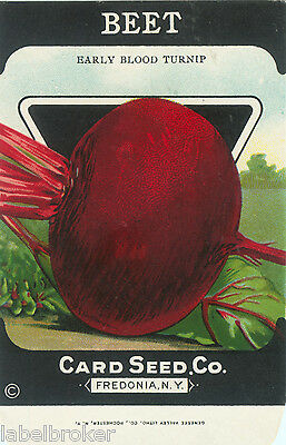VINTAGE SEED PACKET ADVERTISING C1920 GENERAL STORE GARDEN LITHOGRAPH BEETS