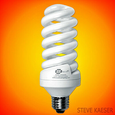 PBL 40 Watt Photo Video Fluorescent Bulb Direct From Our Factory Save $$$