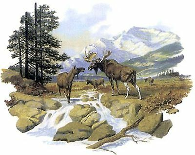 Moose Forest Scene River Mountains Select-A-Size Ceramic Waterslide Decals Tx