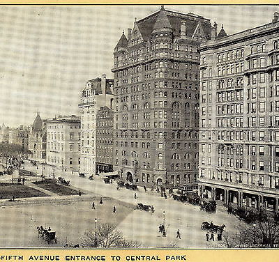 ca. 1905 Plaza Central Park Hotel Savoy New York Singer Sewing photo adv. Card