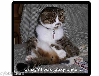 Funny Cat I Was Crazy Once  Refrigerator / File Cabinet Magnet