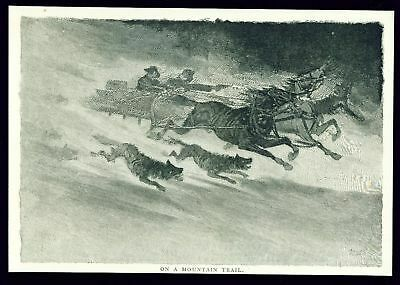 MOUNTAIN TRAIL 1890 Engraving Picture Print Sledge Wolf