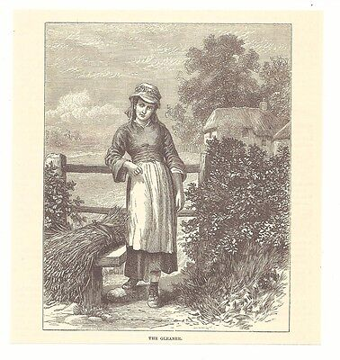 THE GLEANER 1877 Engraving Picture Art Print Farming