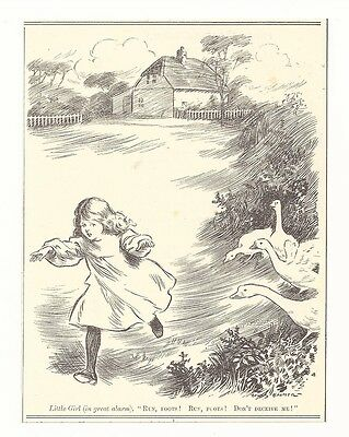 LITTLE GIRL AND GEESE 1906 Punch Cartoon Goose Picture