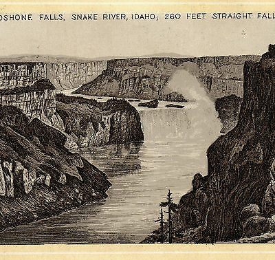 1890s Snake River Shoshone Fall Idaho photo-style Spice Jersey Coffee TRADE CARD