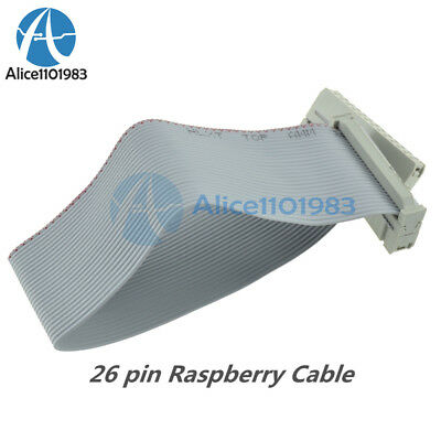 Flat Ribbon Cable wires 26 pin 2.54mm picth 200mm for Raspberry Pi GPIO Header
