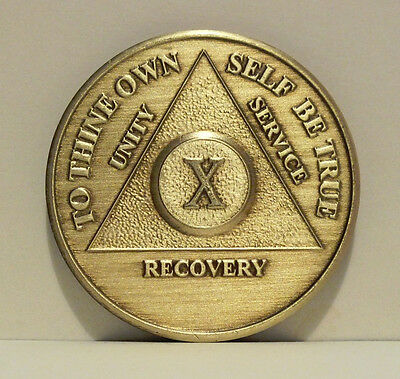 Alcoholic 10 Year Recovery 10 Yr Chip Medallion Coin Medal Token  AA Anonymous
