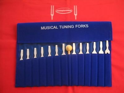 13 Economy Musical Tuning Forks for Piano Guitar+Mallet