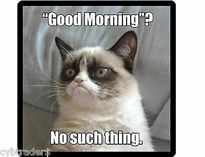 Funny Grumpy Cat Good Mornings  Refrigerator / Locker  Magnet