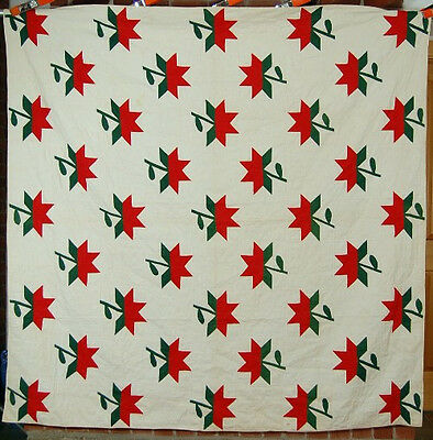 VIBRANT 1870's Vintage Turkey Red & Green Applique Peony Antique Quilt ~MINT!