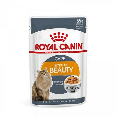 12 Buste Intense Beauty Umido Royal Canin 85 Grammi Per Gatti Bellezza Del Pelo