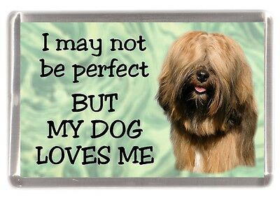 "Tibetan Terrier Dog Fridge Magnet No.2. ""I may not be perfect ...."" by Starprint"