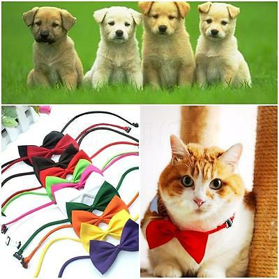 Lot 10pcs 10Colors Cute Dog Cat Pet Puppy Toy Kid Bow Tie Necktie Collar Clothes