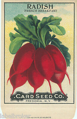 VINTAGE SEED PACKET FLOWERS C1910 GENERAL STORE GARDEN RADISH RARE FOLK ART