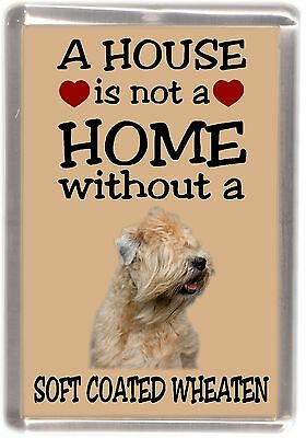 """Soft Coated Wheaten Dog Fridge Magnet """"A HOUSE IS NOT A HOME"""" by Starprint"""