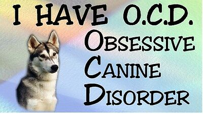 SIBERIAN HUSKY - OBSESSIVE CANINE DISORDER Dog Car Sticker By Starprint