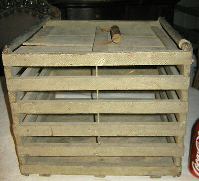 Antique Primitive American Country Chicken Egg Poultry Farm Wood Egg Box Crate