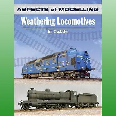Aspects of Modelling by Shackleton T