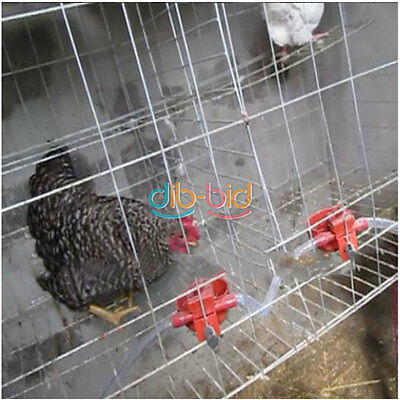 2/5/10 Chicken Poultry Chick Fowl Watering Cup Feed Bird Coop Pigeon Hen Drinker