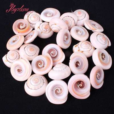 """13-15Mm Whelk White Shell Gemstone For Jewelry Making Spacer Beads Strand 15"""""""