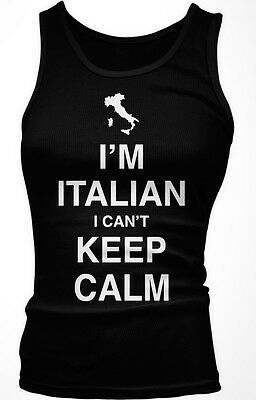 Im Italian I Cant Keep Calm Carry On Parody Italy Guido Meme Mens V-neck T-shirt