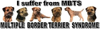 """""""I Suffer from  MULTIPLE  BORDER TERRIER  SYNDROME"""" Dog Car Sticker by Starprint"""