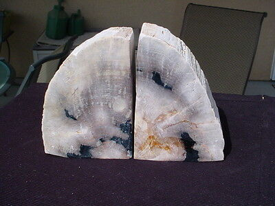 PETRIFIED WOOD BOOKENDS FOR DISPLAY J934