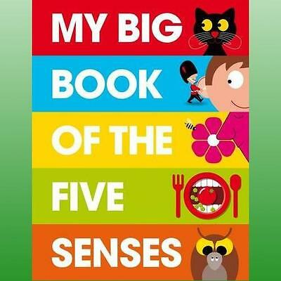 My Big Book of the Five Senses by George Patrick