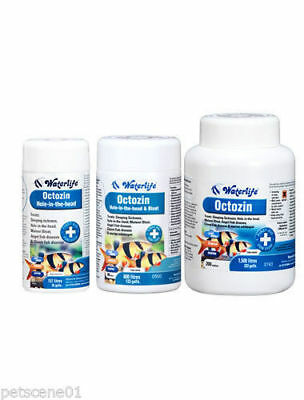 Waterlife Octozin 21 80 200 Tablets Treatment For Fish Tanks Internal Parasites