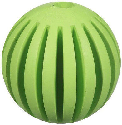 Jw Pet Toy Small Tanzanian Mountain Ball Durable Chew Chomp Free Shipping To Usa
