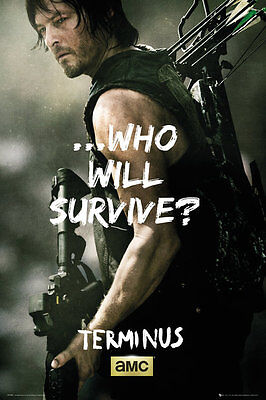 The Walking Dead Terminus Poster Norman Reedus as Daryl Dixon 24x36